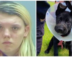 Abusive Woman Faces Felony Charges For Tying Puppy's Mouth Shut For Weeks