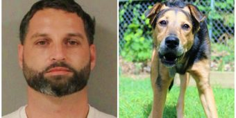Man Thinks He Can Sexually Assault His Dog And Get Away With It Until Police Show Up
