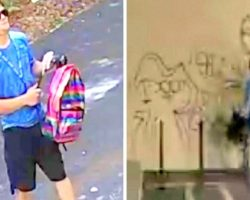 Cops Hunt Punk Who Vandalized Animal Hospital With Graffiti, Causing $2K In Damages