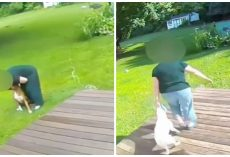 Pet Sitter Caught Hurting Pups In Her Care, Busted On Surveillance Video