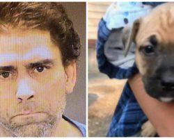 Drunk Man Strikes Puppy With Guitar, When Girlfriend Intervenes He Beats Her