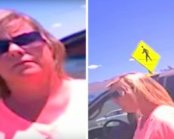 Woman Locks Her Dogs In 114F Hot Car, Cop Asks Her To Sit Locked In Same Hot Car