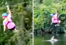 Woman Startled As Alligator Attacks Her Midway On The Zip-Line, Makes Narrow Escape