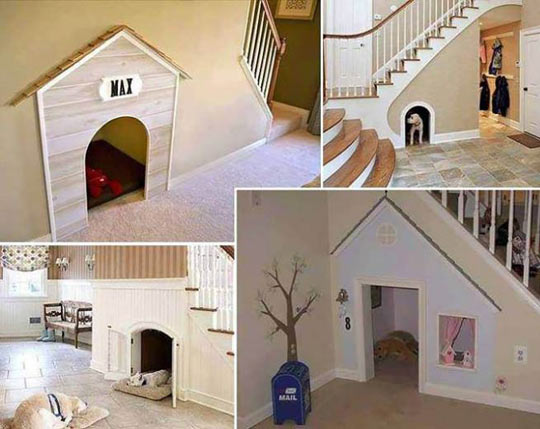 dog-house-stairs