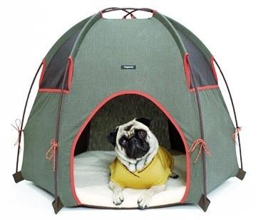 dog-house4