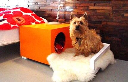 dog-house5