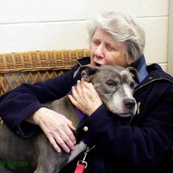 Elderly Nuns Adopt Aging Pit Bull. I'm In Tears…