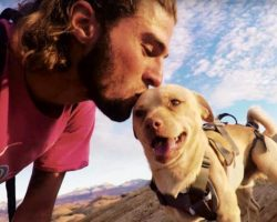Fearless Rescue Dog Jumps Off Cliffs With His Dad