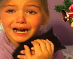 KIDS REACTIONS To Puppy And Kitten Surprise On Christmas – PRICELESS!
