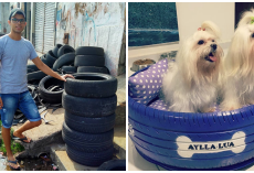 "Man Transformed Old Tires Into ""Cozy"" Little Dog Beds For Animals"