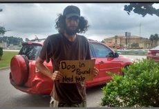 Kind Woman Pays $120 To Help Homeless Man Get His Dog Back From Pound