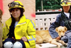Remembering The Legacy Of The Last 9/11 Hero Dog