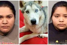 Women Lock Dog In Kennel For Days, Use Bolt Cutters & Nearly Amputate His Leg