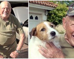 78-Year-Old Vietnam Veteran Brawls With Bobcat To Protect His Helpless Pooch