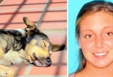 Vile Woman Abandons 3 Dogs In Vacant Home For Weeks, Emaciated Dogs Found Dead