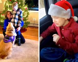 Mall Bans 9-Year-Old Epileptic Kid From Meeting Santa Because Of His Service Dog