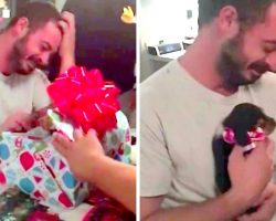 Veteran Suffering From PTSD Gets An Early Christmas Present & Bursts Into Tears