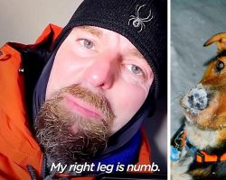 Vet Spends 4 Hours In Cold Doghouse At Night, Shows How Dogs Suffer In The Cold