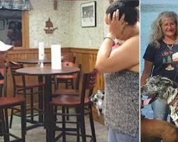 Angry Lady Screams At Veteran For Bringing Service Dog Into Restaurant And It Sparked Outrage