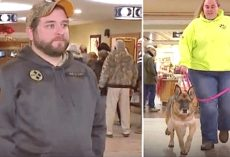 Army Veteran Nervously Awaits Reunion With His Military Dog, Moment 'Caught' On Live-TV