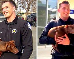 Cop Rescues Puppy Being Strangled By Owner, Arrests Owner & Adopts Puppy Himself