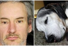 Man Slashed Dog To Death With An Axe Because He 'Refused To Go Outside'