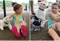 "Toddler With No Feet Gets Pup Without Paw: ""That's My Puppy, He's Just Like Me"""