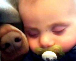 Mom Sees Baby Sleeping Blissfully But A Tiny Nose Pops Up From Under The Blanket