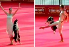 "Ballerina Teaches Dog To ""Dance"" With Her, Gets Standing Ovation From Audience"