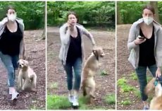 Lady Chokes & Drags Her Dog In Angry Rage When Man Asks Her To Put Leash On Him