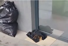 Wrapped Up Baby Laid Outside Bank Cold And Hungry & No One Stopped For Him