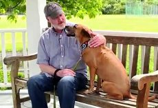 Dad Tears Up As He Makes Bucket List To Cheer Up His Dying Cancer-Stricken Dog