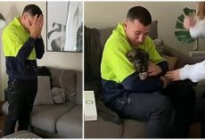 Grown Man Bursts Into Tears When He Gets New Puppy: 'This Was All He Ever Wanted'