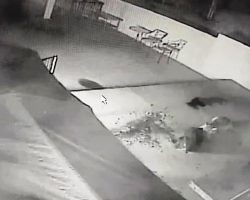 Footage Shows Mountain Lion Attacking Doberman And Grabbing Him By The Neck