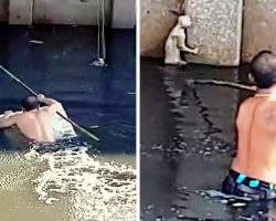Despite Being A Poor Swimmer, Man Jumps Into Dirty Canal To Help Drowning Cat