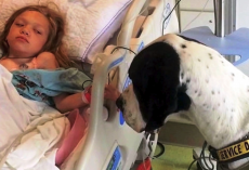 Girl With Rare Genetic Disease Was Wasting Away, Then She Locked Eyes With A Dog