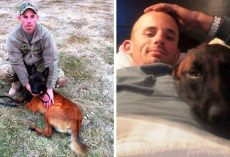 Soldier Suffers From PTSD Upon Return, Only His Old Military Dog Can Save Him