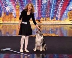 She Brings Her Rescue Dog And A Broom On Stage, Proceeds To Steal The Show