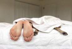 New Study Says, Women Sleep Better With Their Dogs
