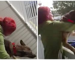 Deranged Woman Gets Mad & Throws Her Helpless Dog Off Second Floor Balcony