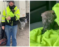 "Garbage Truck Driver On Route Finds ""Moving Backpack"" Thrown To Side Of Road"