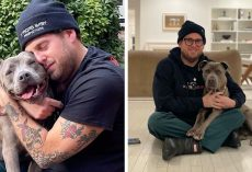 Actor Jonah Hill Expresses His Joy After Adopting A 3-Year-Old Doggy, Gets Praised by 336K People On Instagram