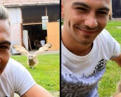 Baby Owl Hears Man Whistling His Favorite Tune, Comes Running Into Man's Arms
