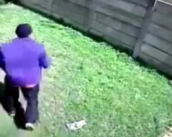"""Burglar Tries To Enter A Home, But Gets Chased Off By A """"Scary And Vicious"""" Dog"""