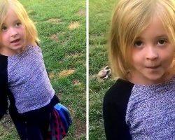 Little Girl Becomes Her Dog's Attorney And Defends Him Against Mom's Accusation
