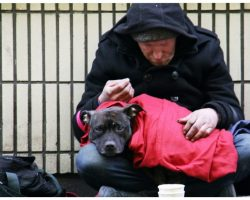 Homeless Man Pleads With Shelter To Get His Dog A Forever Home Before He Dies