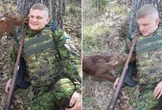 Lost And Confused Baby Calf Approached Soldier In Woods And Tries To Tell Him Something