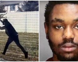 Man Chucks Puppy Onto Pavement & Breaks Her Leg, Says He Was 'Just Training Her'