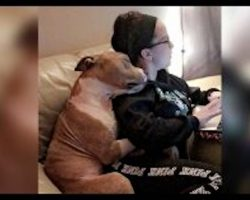 Adoption Photo Is Teaching Others That Shelter Dogs Have So Much Love To Give