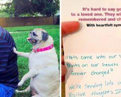 Man returns unused pet food after his pet dies, but their reply leaves him in tears